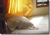 ilustrasi-tempat-tidur